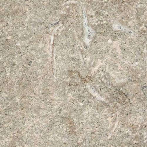 fossil green marmer vloertegel